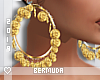 B|Gold Hoops