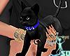 ^KITTY 4 FEMS V2