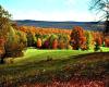 *L* Autumn Glory BG
