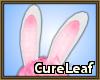 CL~ Bunny-ish ears