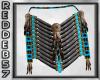 Native American Plate