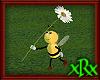 Bee Daisy 2