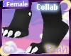 [F] Nox Paws