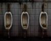 Toilette Room