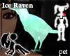 [Hie] Ice Raven