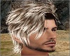 Mixed Blond Sage Hair