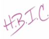 H.B.I.C Custom Headsign