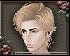 [a] Blonde Willie