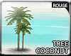 |2' Coconut tree IV