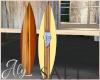 Salt Island Surf Boards