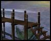 *Y* Beach Dock 02