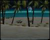 Savanna Beach