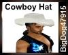 [BD] Cowboy Hat