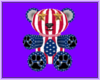 0421 USA BEAR JULY 4TH
