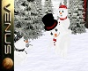 ~V~Snowman Fun