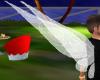 fairy wings m