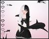 T! Cute Shark's - Black