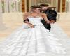 Showing Wedding Rings KK