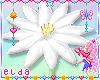 ❤ Kid Butterfly Flower