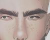 laptm brows