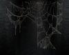 !Halloween Cob Webs