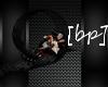 [bp] CD love Seat