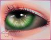 [SM]Eyes G/BeUnisex