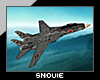 ツ F-14 Jet