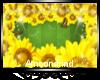 AM:: Sunflowers Frame 2