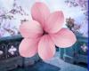 Spring Ear Flower