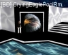 [BD] CryingEaglePoolRm.