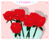 ♡ Red Rose