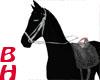 [BH]Royal Horse black