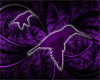 Purple Humming Birds