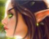 Elf Art Sroll 1
