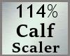 114% Calves Scale MA