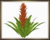 Tropical Plant Derive