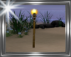 ! cosy beach torch.