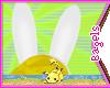 :B) Fionna ears