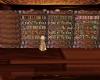 Castle Book Shelf