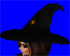 Witches Spider Hat