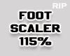 R. Foot scaler 115%