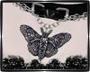 ⚔ Moth Choker M
