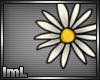 lmL Daisy 2