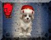 Gooding Christmas doggie