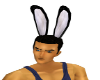 M/F Fur  Bunny Ears Anim