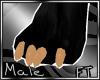 (M)Tan Fur Paws [FT]