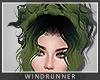 WR! Rae Rainforest