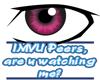 Peers, are u watching me
