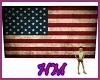 American Flag Free